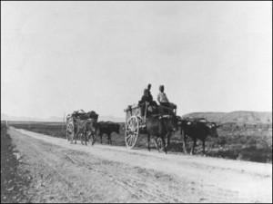 cyprus-cart