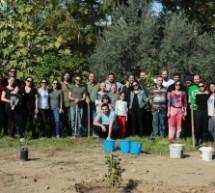Baraka Kültür Merkezi ve Bağımsızlık Yolu Lefkoşa'da Ağaç Dikimi Gerçekleştirdi
