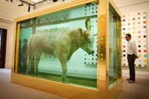 Damien-Hirst-The-Golden-Calf-courtesy-of-zimbio.com_