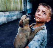 Sokak Hayvanları ve Çocuklar-Emel Cicibaba